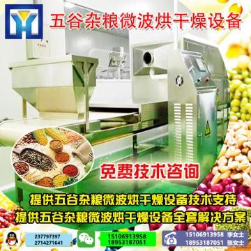 五谷杂粮微波熟化设备  红豆绿豆烘焙机