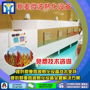 小型微波干燥机 微波干燥箱 柜式微波设备 工业微波炉